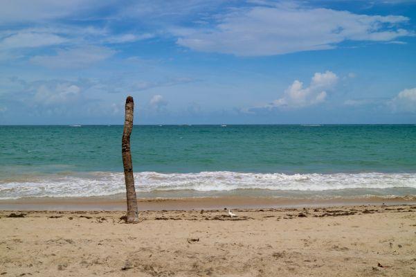 Beach at San Juan