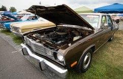 carlisle_car_show-89